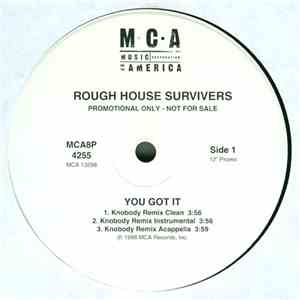 Rough House Survivers - You Got It FLAC album