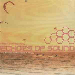 Echoes Of Sound - Need Somebody (Who Needs Me) FLAC album
